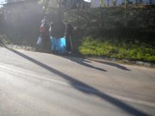 4ecologizare-2012